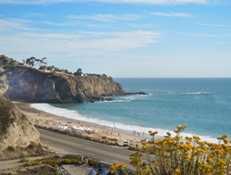 Image of Crystal Cove State Beach
